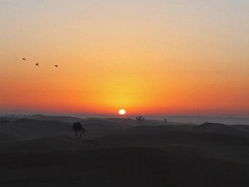 砂漠の朝日.jpg